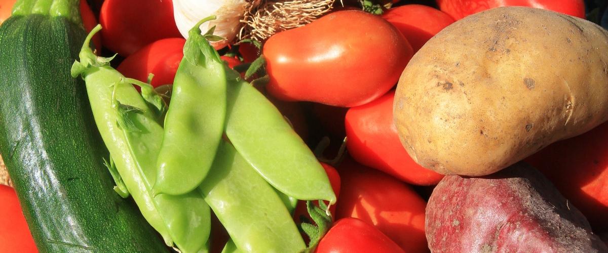 Edible Garden Veggie Garden Healthy Produce Tastes Better