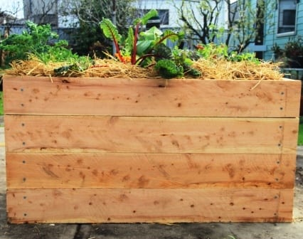 raised garden bed cypress sleepers
