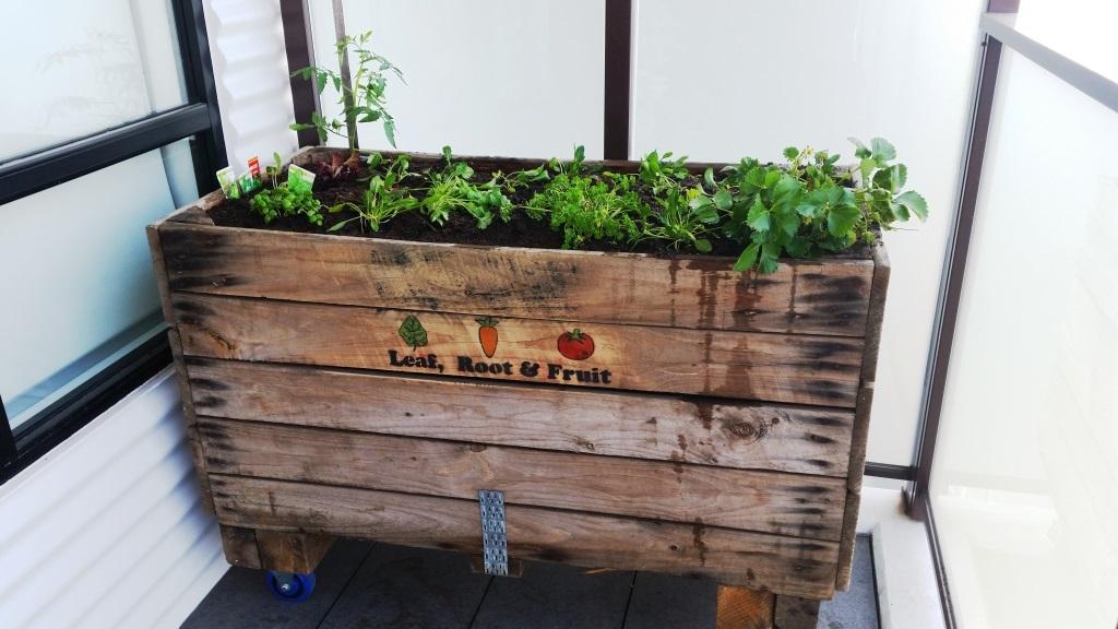 Apple Crate Veggie Garden