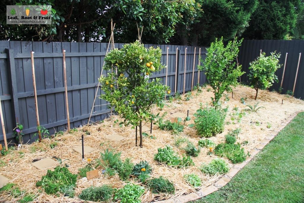 Veggie Garden Makeovers Kitchen Garden