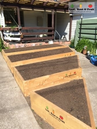 Veggie Garden Raised Beds