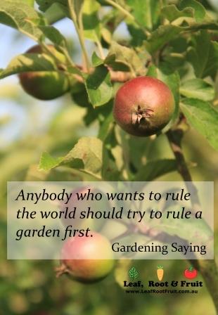 Gardening Quotes and Sayings , Leaf, Root \u0026 Fruit Gardening