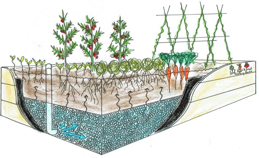 Self Watering Wicking Beds Leaf Root Amp Fruit Gardening